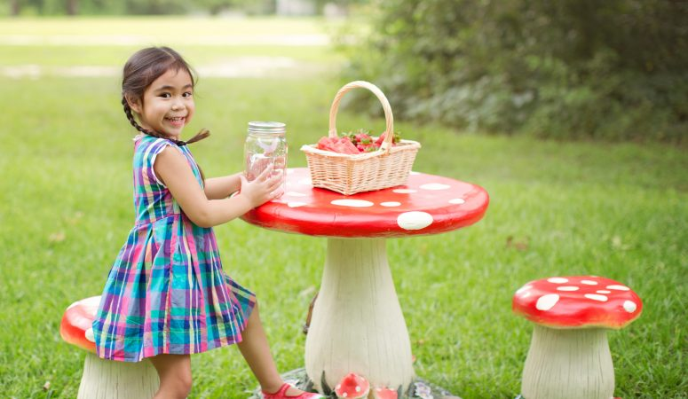 Lily's Summer Picnic  | Milestone Session | Fayetteville NC Photographer