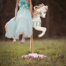 That Magical Horse | Carousel Horse Minis | Greensboro NC Photographer
