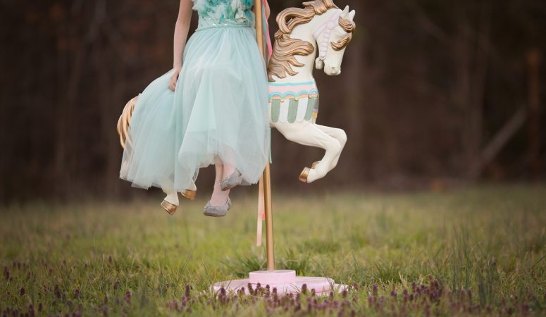 That Magical Horse | Carousel Horse Minis | Greensboro NC Photographer