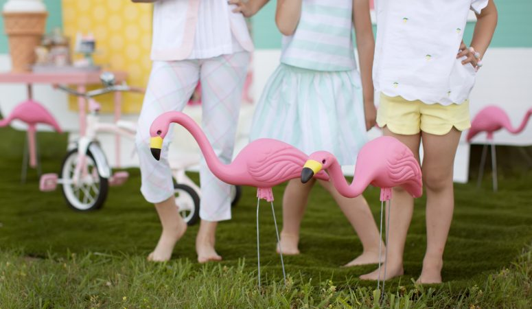 Sprinkles & Flamingos | Greensboro NC Photographer | Patty K Photography