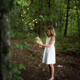 Fireflies & Swings | Patty K Photography | Greensboro NC Photographer