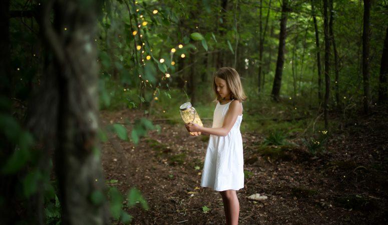 Fireflies & Swings | Patty K Photography | Greensboro NC Photographer