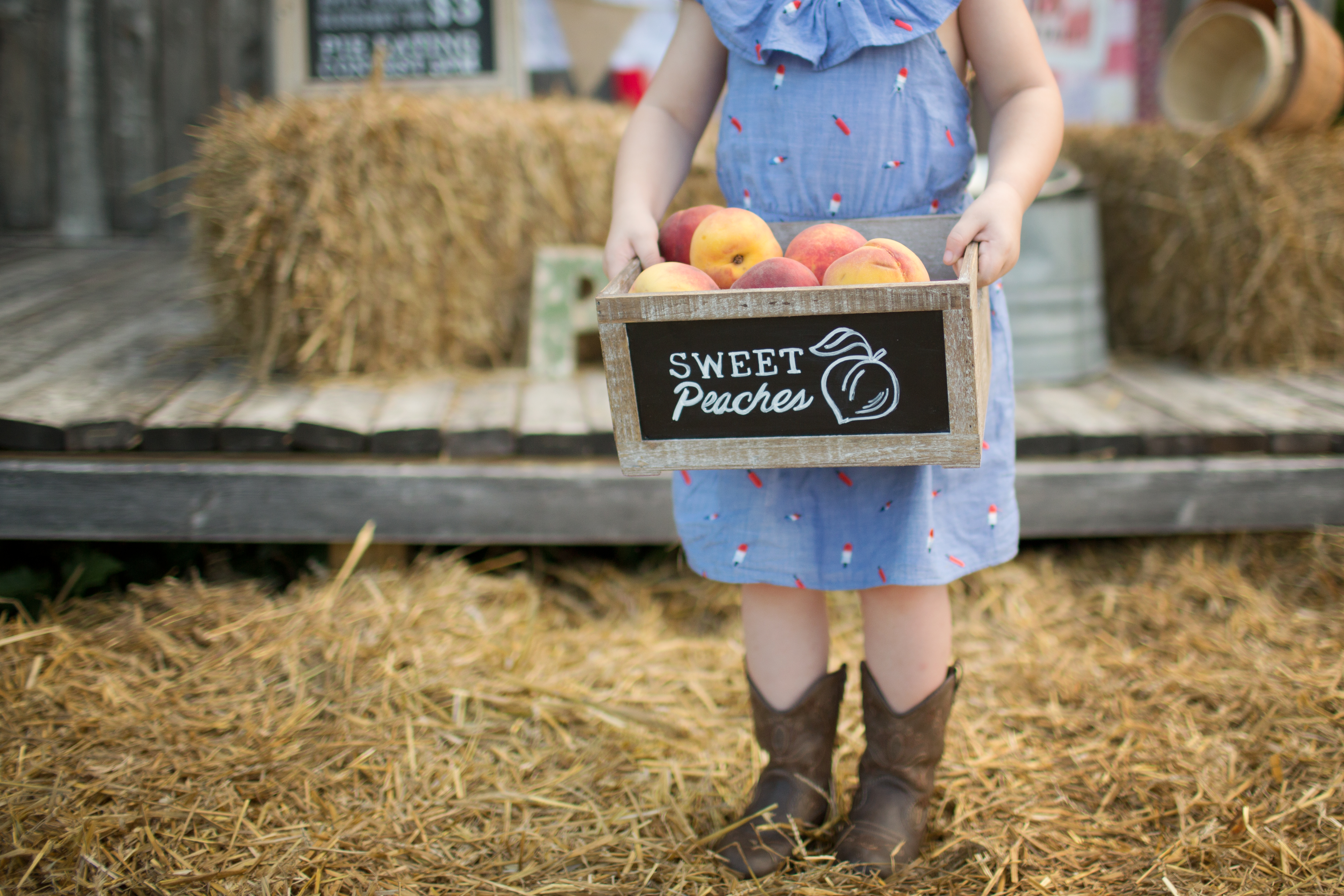 Pies for Sale | Patty K Photography | Greensboro NC Child Photographer