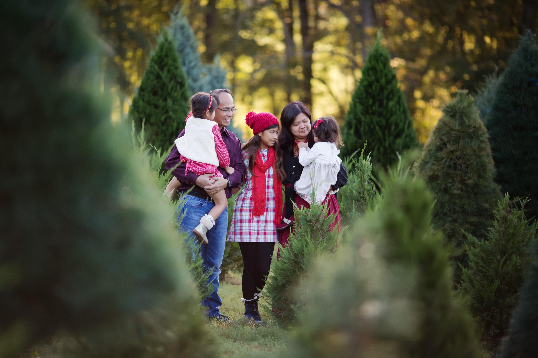 B Family | Very Merry Minis | Greensboro NC Photographer