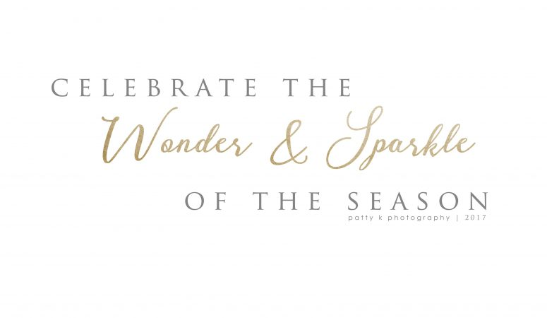 Wonder & Sparkle | Night Before Christmas Sessions | Greensboro NC Photographer
