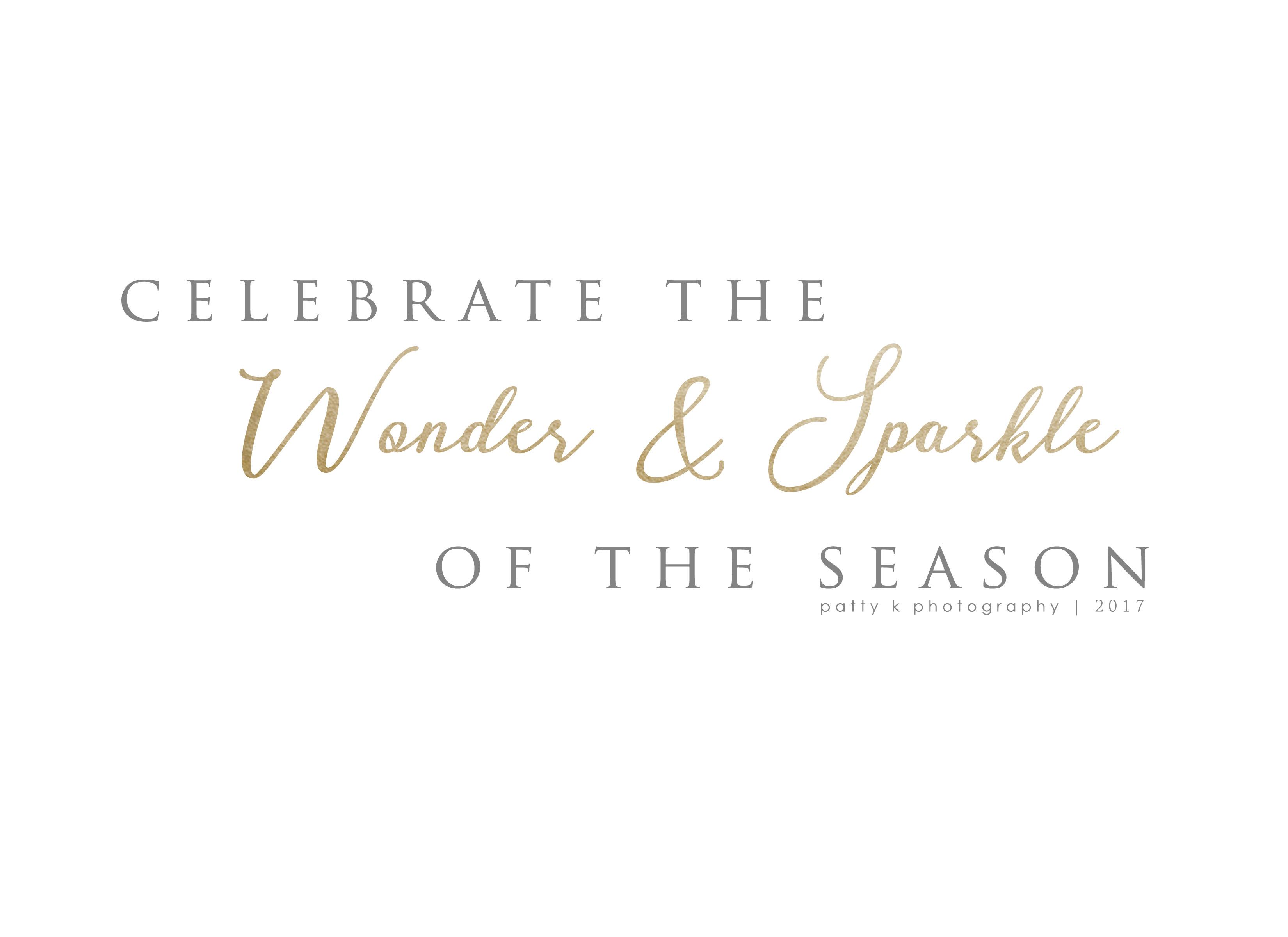 Wonder & Sparkle | Night Before Christmas Sessions | Greensboro NC Photographer