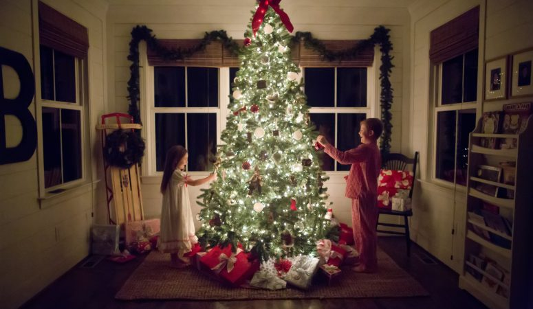 Night Before Christmas Sessions | Summerfield NC Photographer