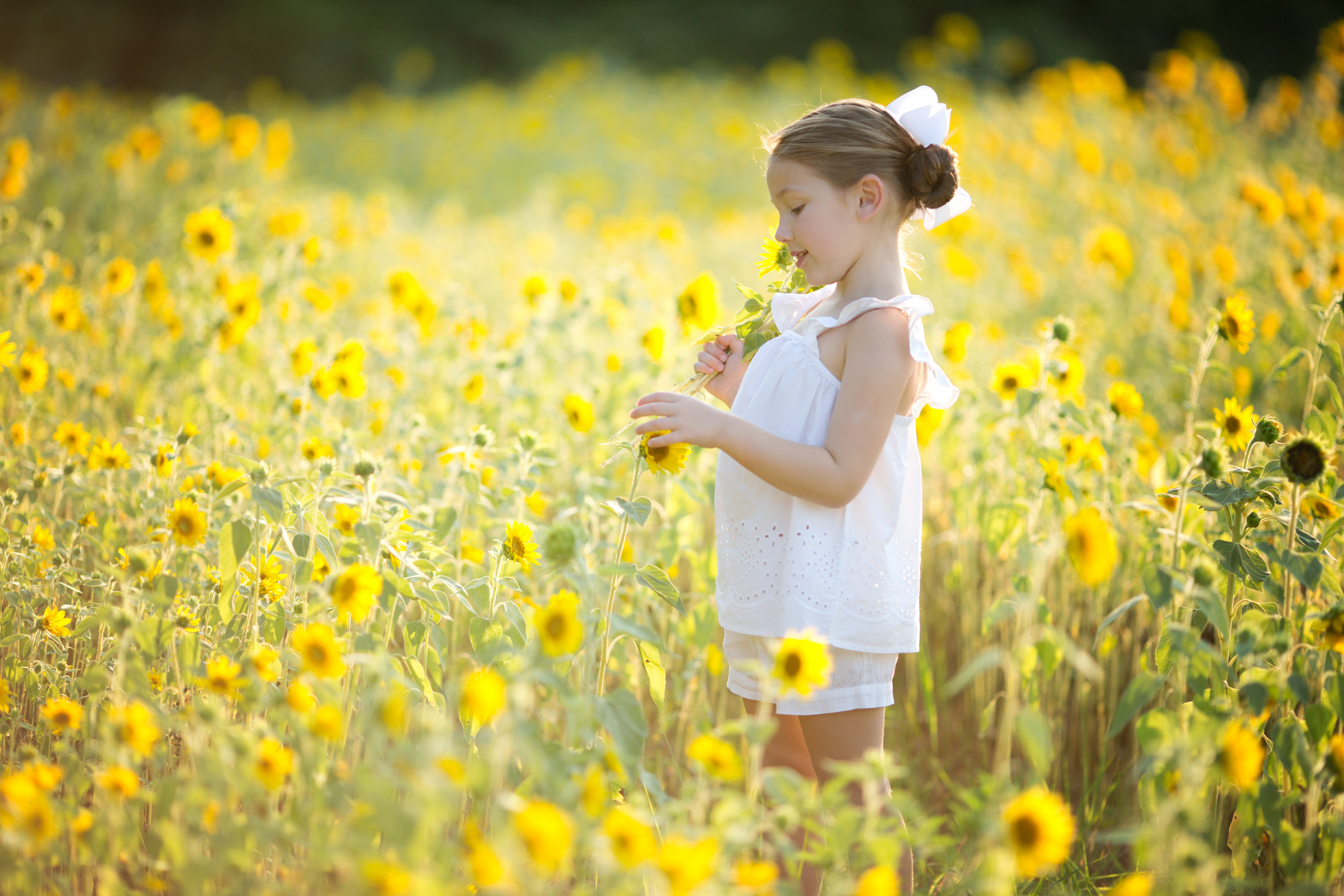 A Field of Yellow | Wild Sunflower Mini Sessions |  Greensboro NC Family Photographer